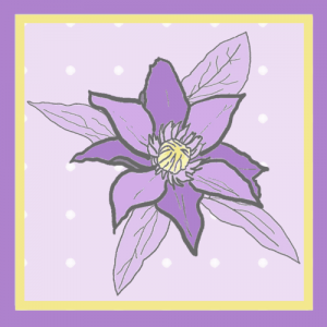 Clematis Lilac