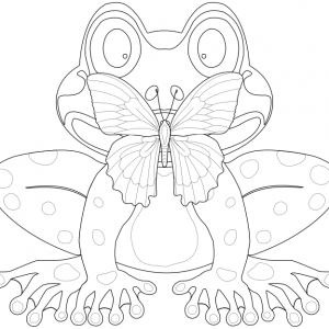 A line drawing of a butterfly sitting on the nose of a frog