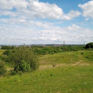 A photograph of a field, with a town in the distance, under a blue sky studded with fluffy white clouds